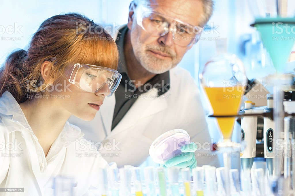 Male and female chemists working in a lab stock photo