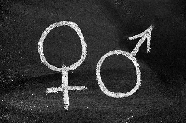 수컷 및 암컷 암수구분 기호를 blackboard - 성별 뉴스 사진 이미지