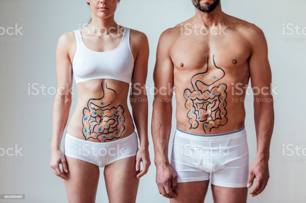 Male and Female Intestinal Health Concept stock photo