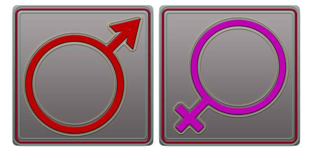 Ilustração de símbolos masculino e feminino - foto de acervo