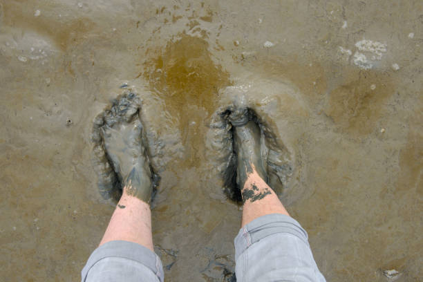 Male barefoot person walking in mudflat stock photo