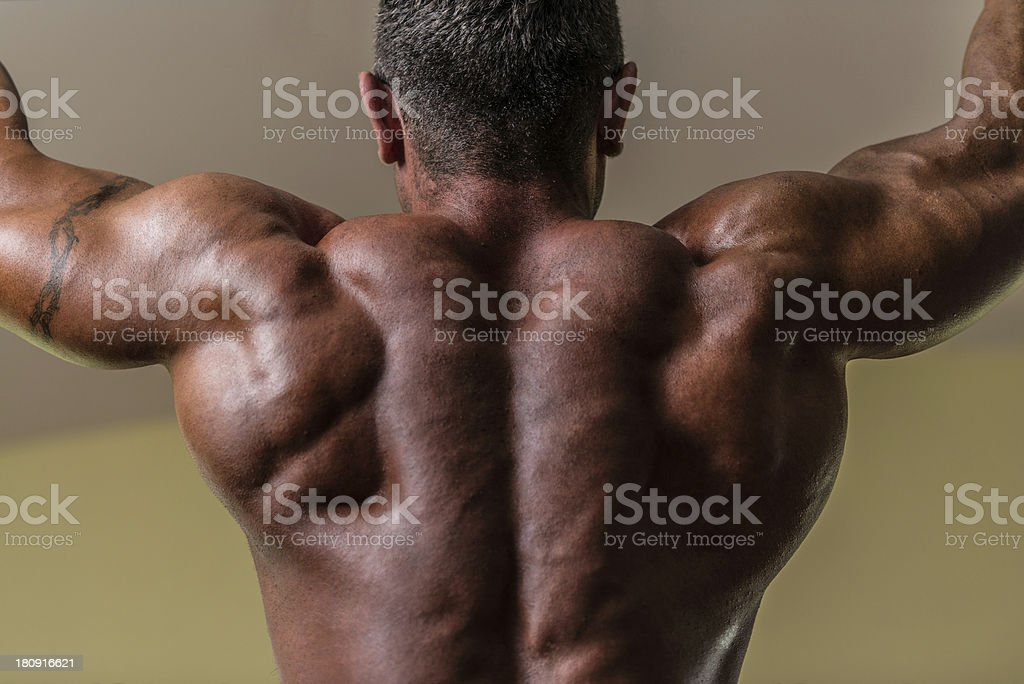 male body builder doing heavy weight exercise for back royalty-free stock photo