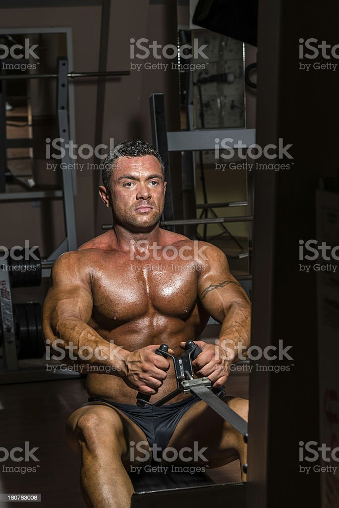 male bodybuilder doing heavy weight exercise for back royalty-free stock photo