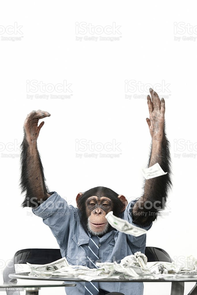 Male Chimpanzee throwing cash stock photo