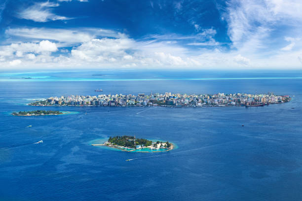 male city aerial view - foto stock
