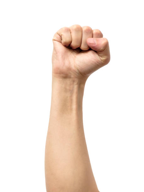 Male clenched fist, isolated on a white background stock photo