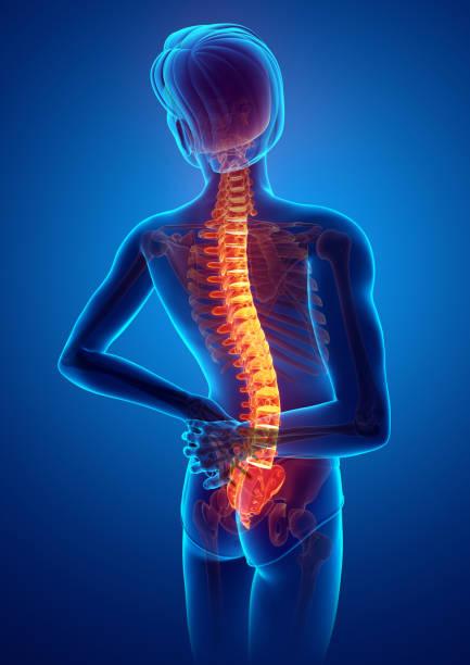 Male Feeling the back pain stock photo