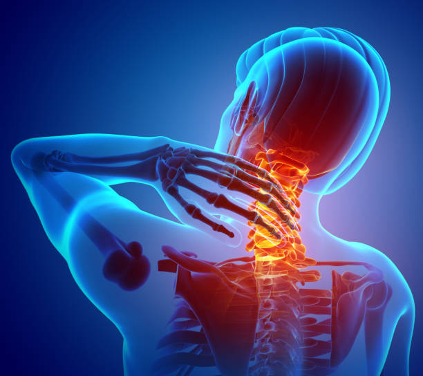 Male Feeling the Neck Pain 3d Illustration of men Feeling the Neck Pain spine body part stock pictures, royalty-free photos & images