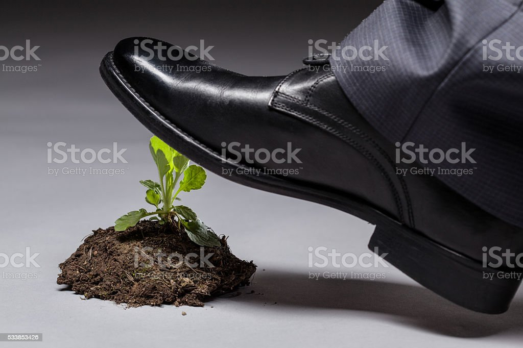 Image result for stepping on a new sprout""