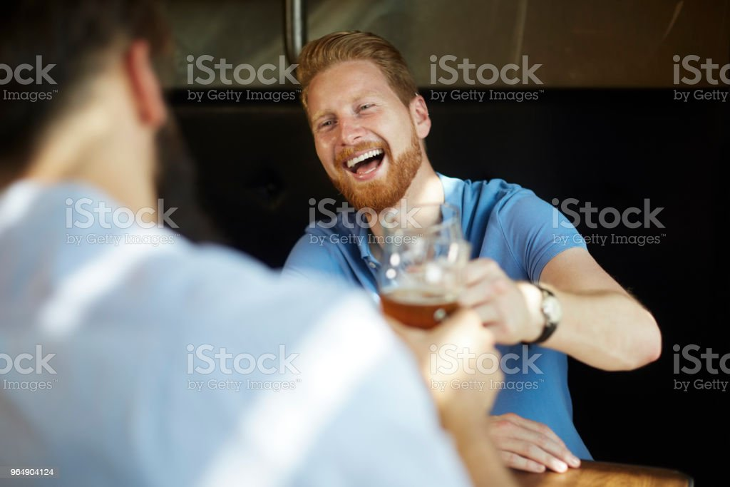 Male friends in the bar royalty-free stock photo