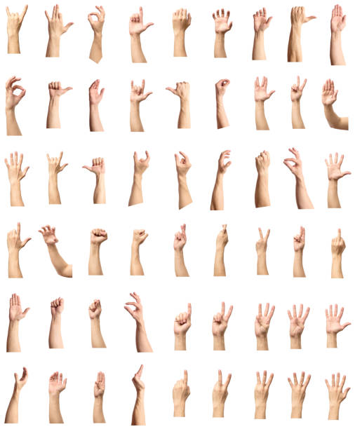Male hand gesture and sign collection isolated over white background, set of multiple pictures stock photo