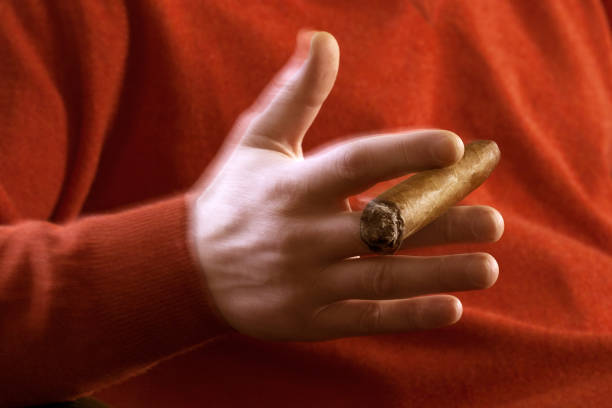 Male hand holding a cigar. stock photo