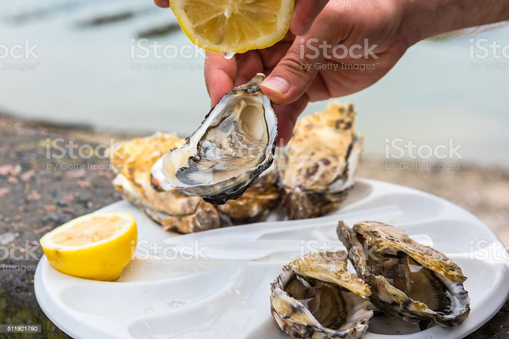 Image result for Oysters istock