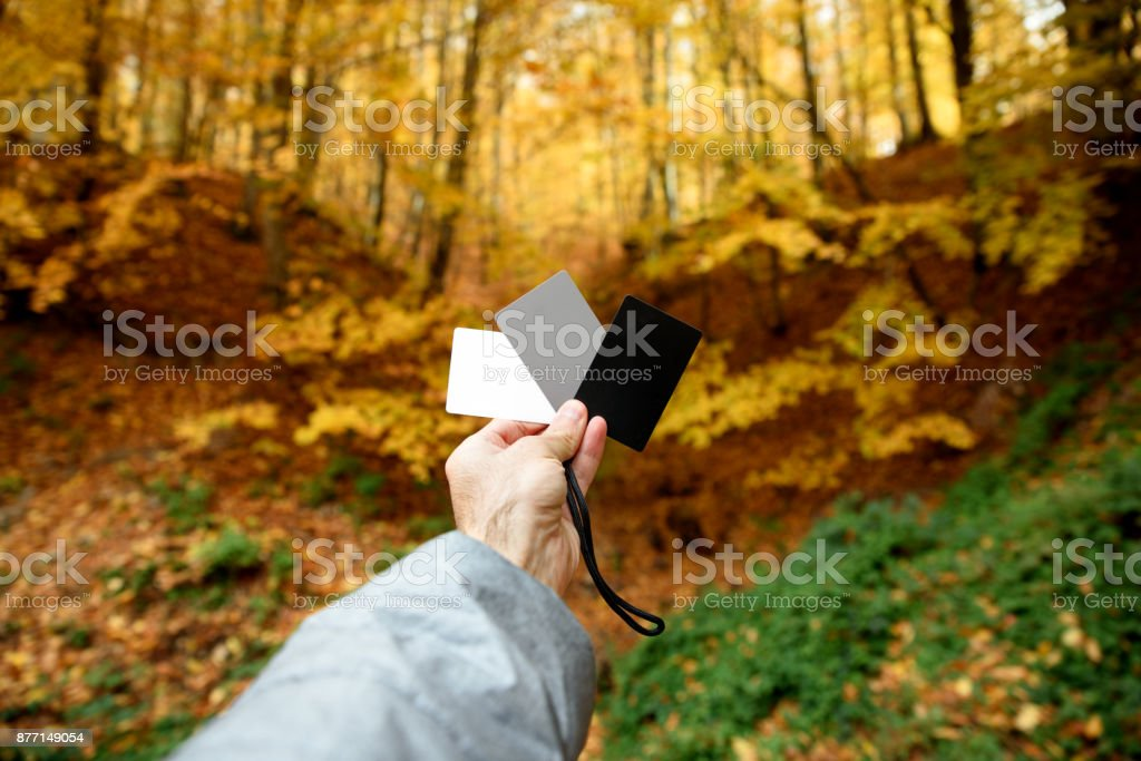 Male hand holding photography gray card for white balance stock photo