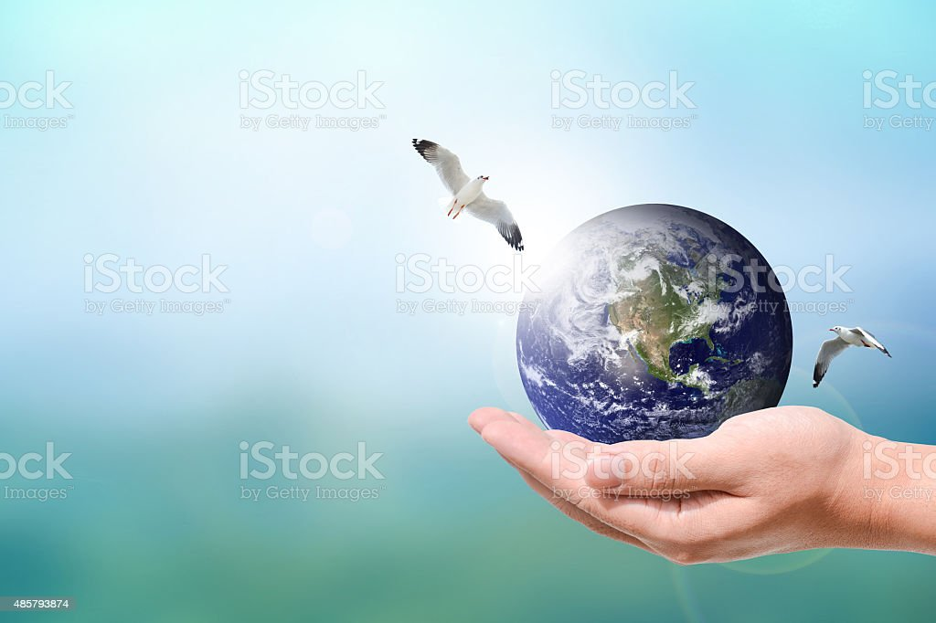 Male hand holding the Earth stock photo
