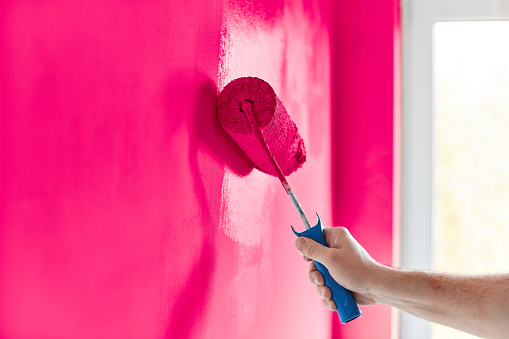Male Hand Painting Wall With Paint Roller Painting Apartment Renovating With Hot Pink Color Paint Stock Photo Download Image Now