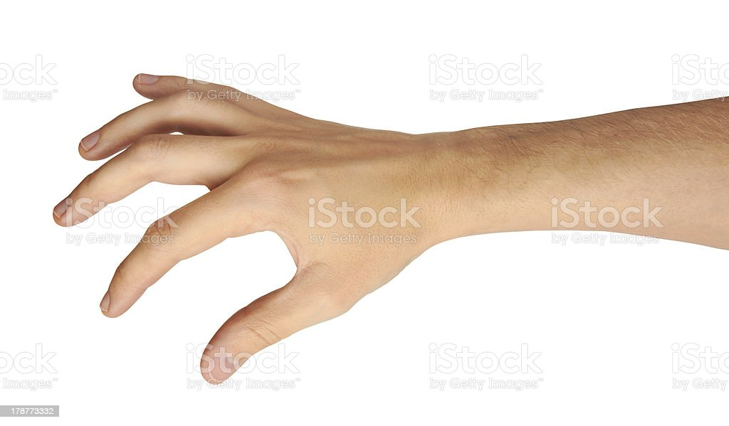 male hand royalty-free stock photo