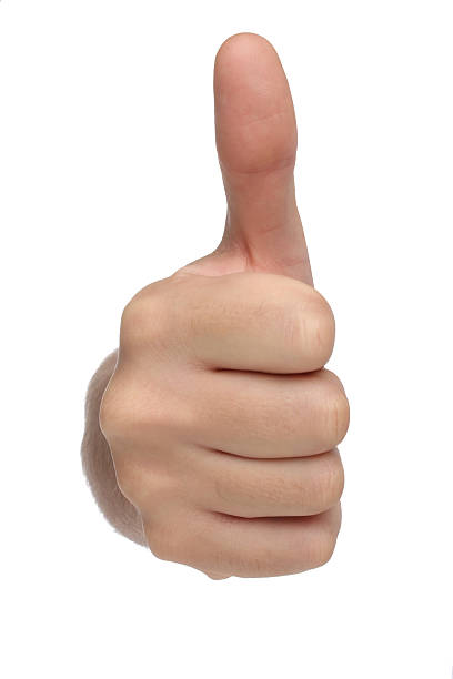 Male hand sign with thumb up. Isolated stock photo