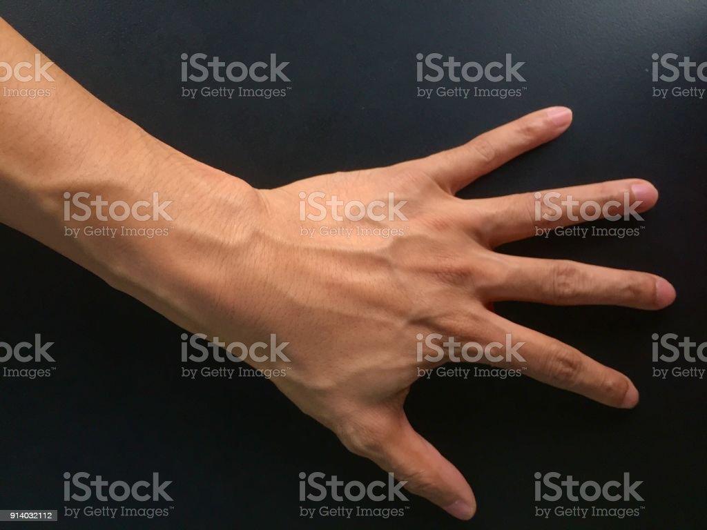 Hand adern auf der Vaskularität verbessern: