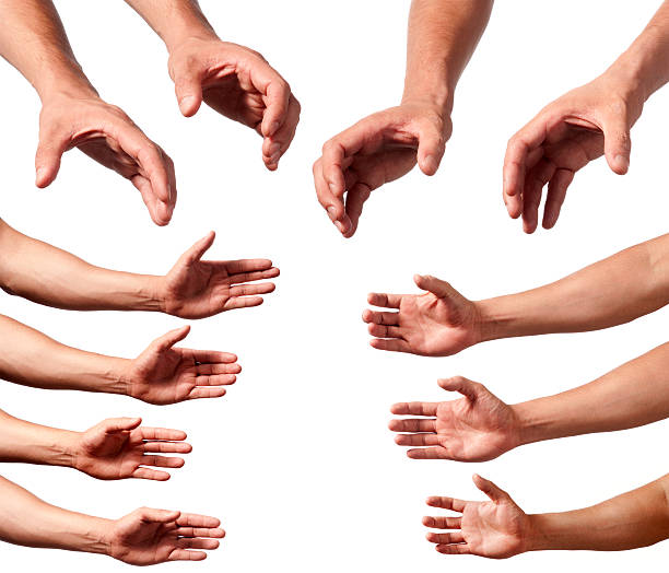 Male hands and arms stock photo