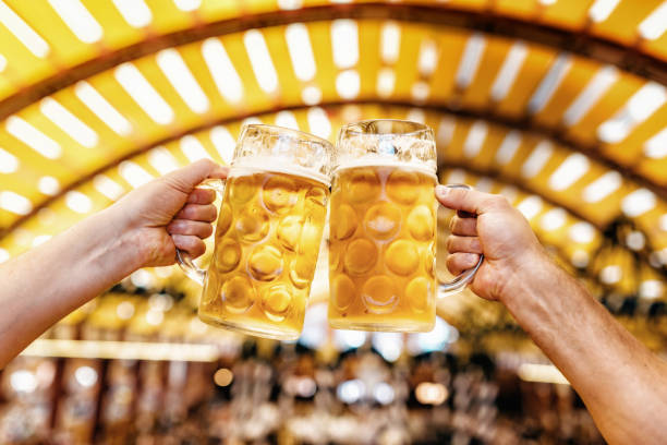 male hands clinking beer glasses at oktoberfest in munich stock photo
