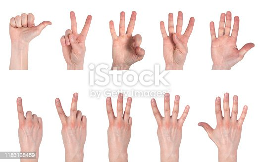 693519466 istock photo Male hands counting from one to five isolated on white background 1183168459