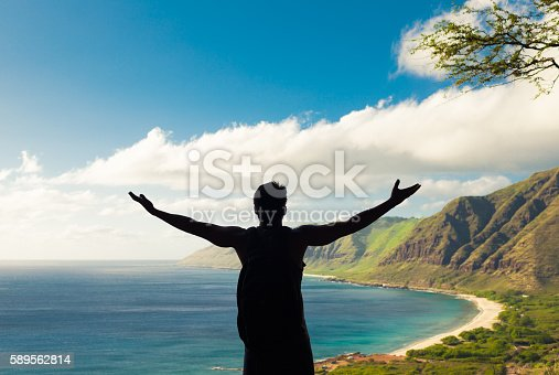 istock Male hiker celebrating at the peak 589562814
