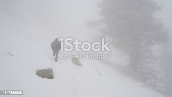 istock Male hiker in snowy white winter mountain and tree landscapes in Sequoia and Kings Canyon National Park, California, USA. 1347868638