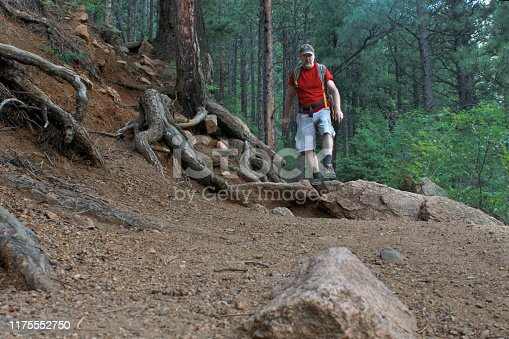 A middle aged white male hiker in a red shirt on a rocky mountain trail surrounded by pine forest and exposed roots in Colorado, United States of America