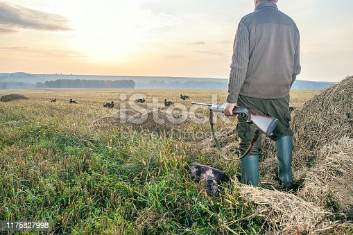 Male hunter in ready to hunt. The man on the hunt. Hunter man with rifle at dawn.