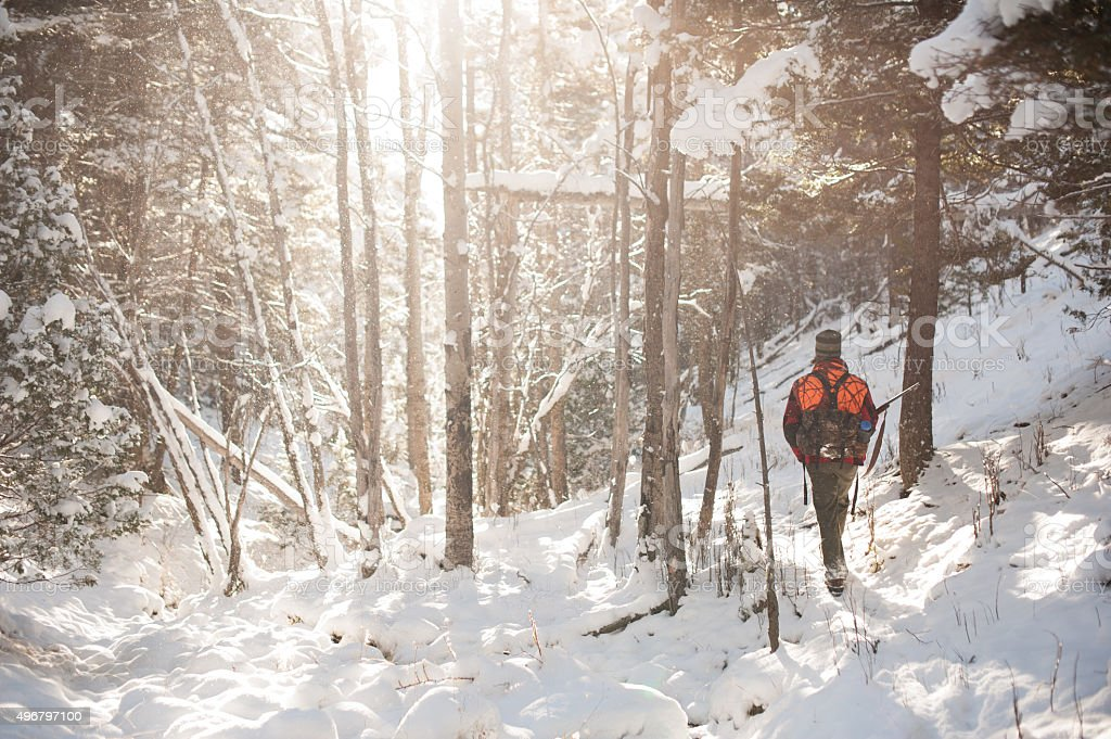 Male Hunter Walking through snowy forest backlit by sunshine stock photo