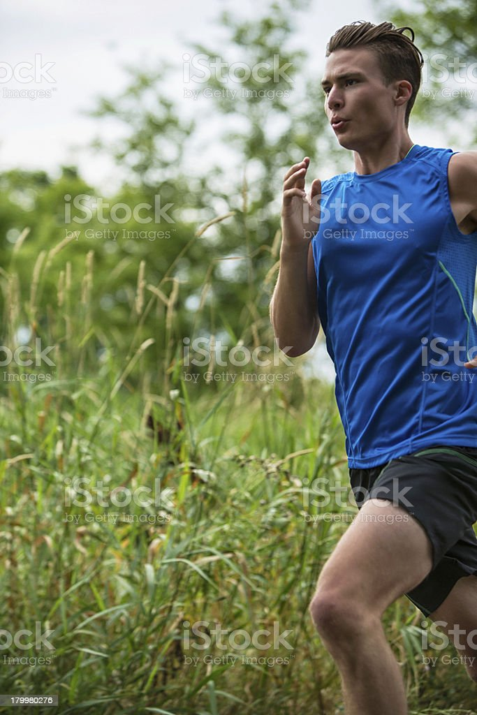 Male Jogger royalty-free stock photo