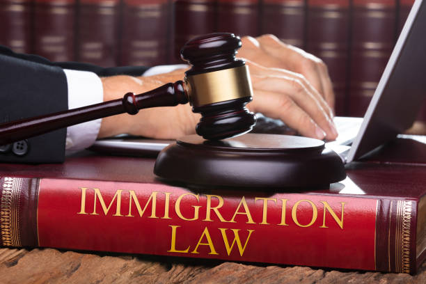 Male Judge With Immigration Law Book Typing On Laptop Male Judge With Immigration Law Book Typing On Laptop On Front Of Gavel deportation stock pictures, royalty-free photos & images