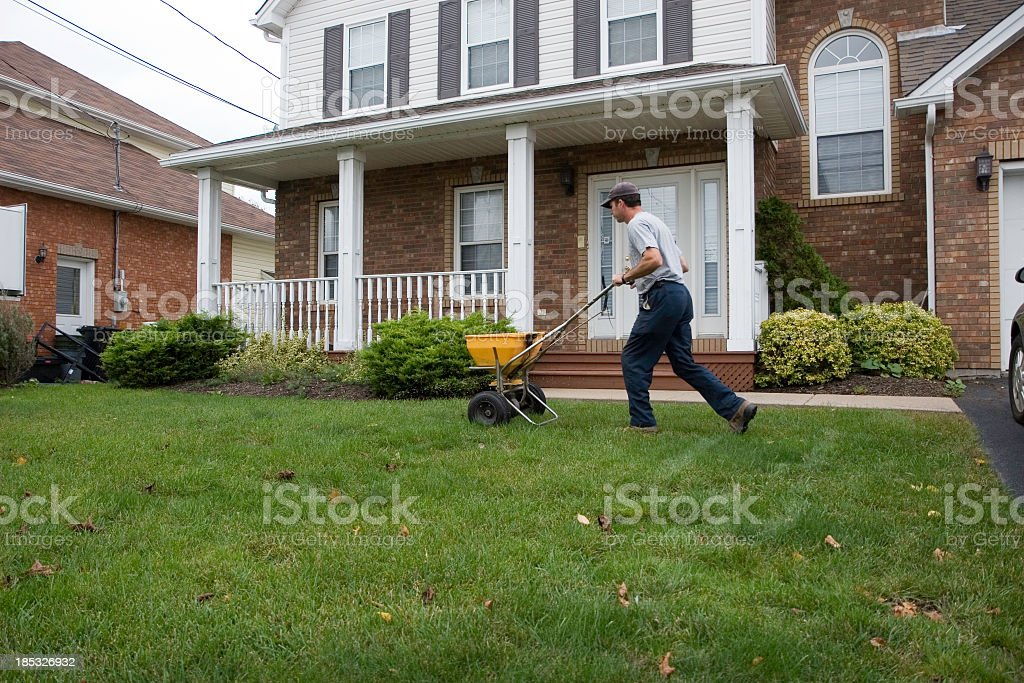 Male landscaper pushing a fertiliser machine on a lawn stock photo