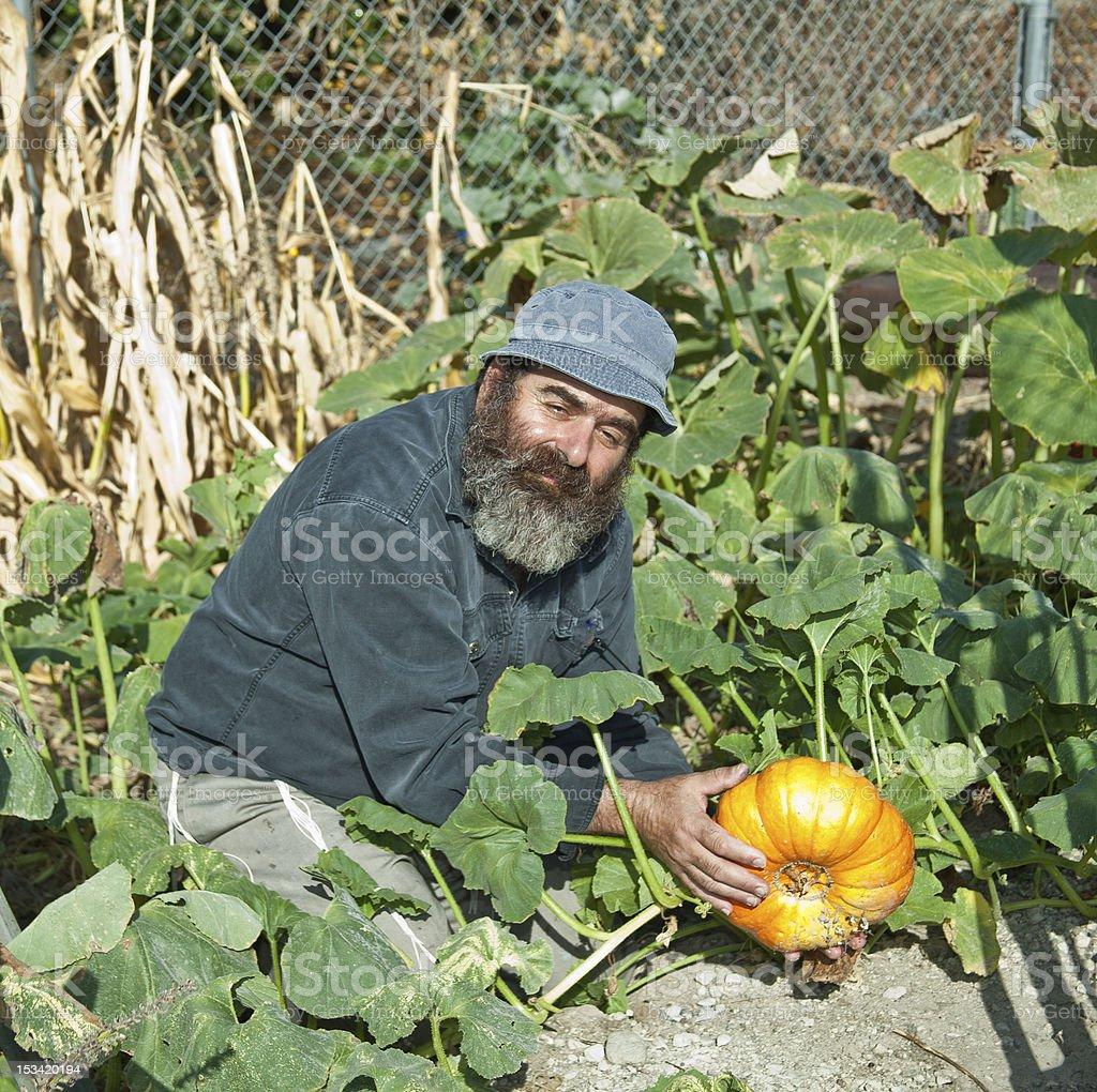 Male Model Displaying Pumpkin royalty-free stock photo