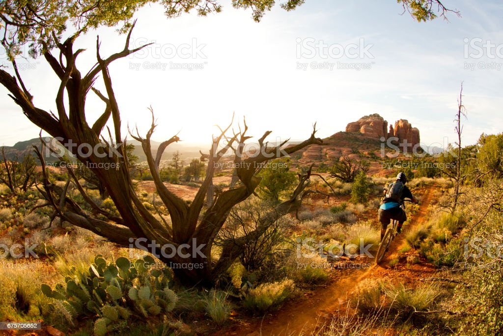 A male mountain biker rides quickly down a popular singletrack trail in Sedona, Arizona, USA at the end of the day. stock photo