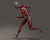 istock Male Musculature in Action 460682101