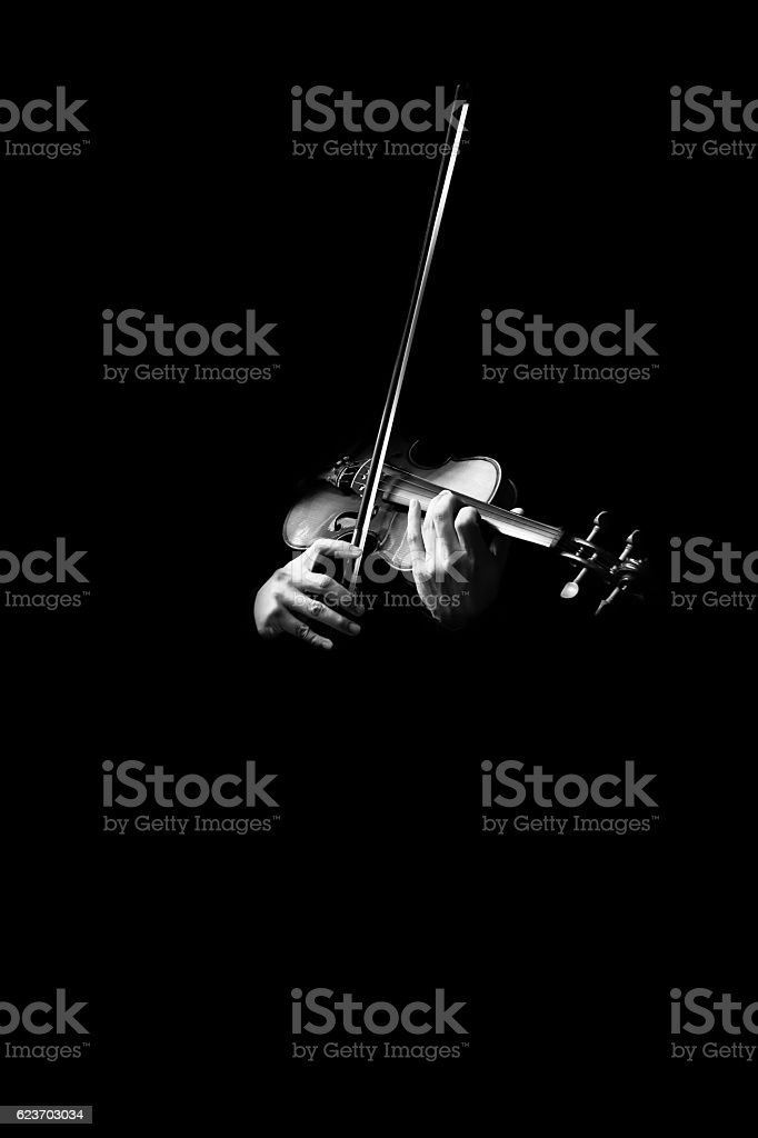 male musician hands playing classical violin stock photo