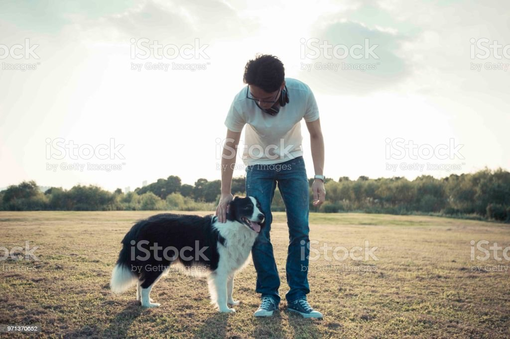 Male Owner Enjoying Leisure Time With His Border Collie Dog