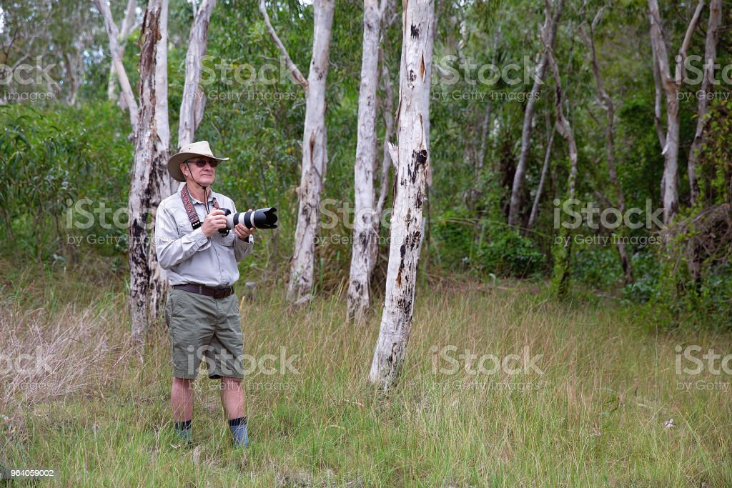 Male Photographer Taking Pictures In Bushland - Royalty-free Active Seniors Stock Photo