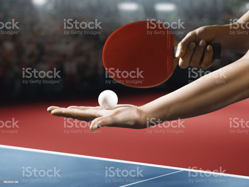Male ping pong player holds a red table tennis racket and ball stock photo