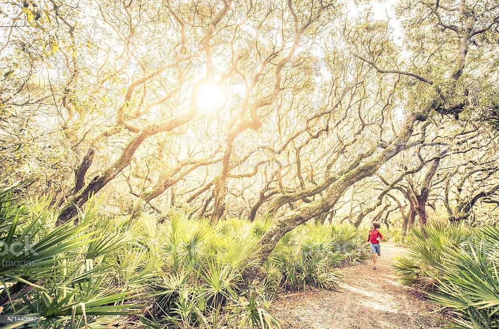 Male runner on training run through woods at sunset stock photo