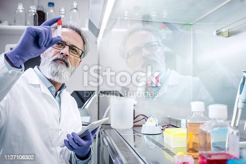 Scientist Working in The Laboratory