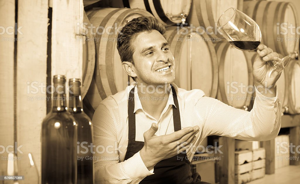 male seller holding glass on wine in cellar stock photo