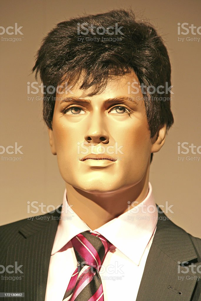 male showcase dummy with tie royalty-free stock photo