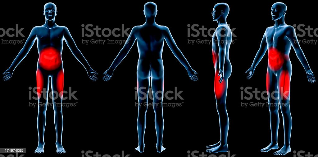 Male subcutaneous/visceral fat zones stock photo
