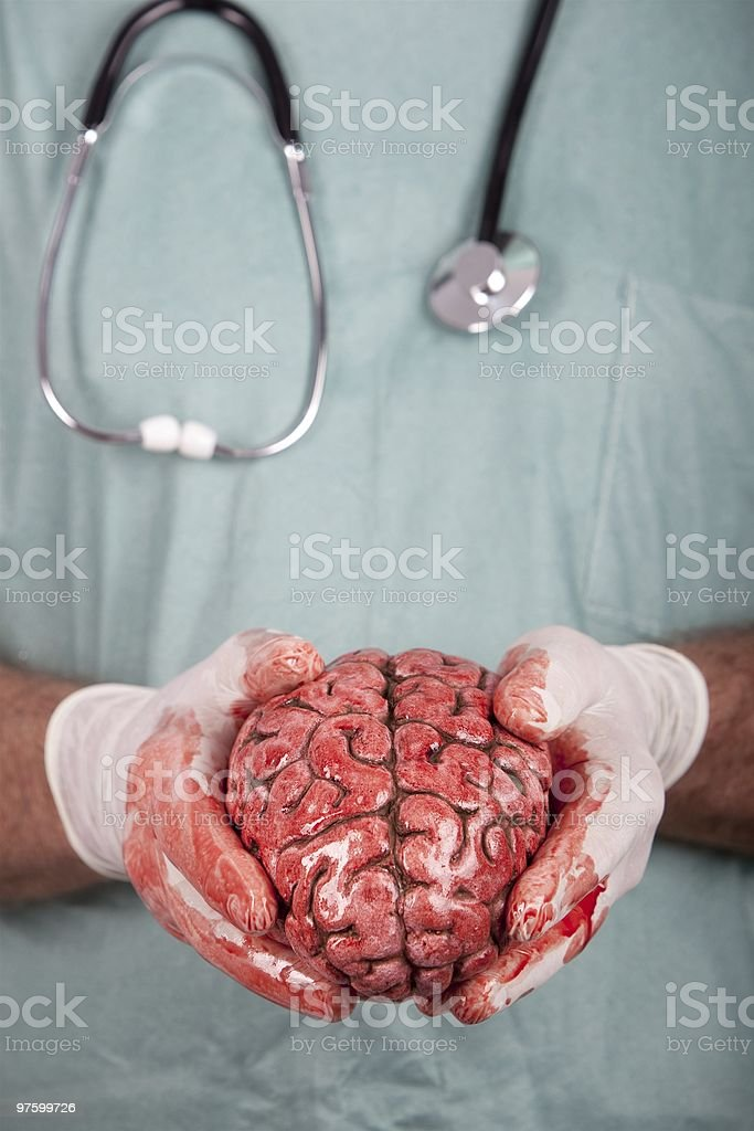 Male Surgeon Holding Brain royalty-free stock photo