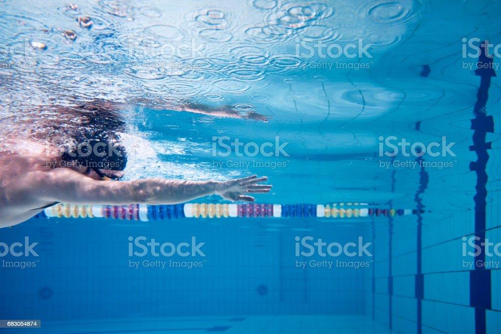 Male swimmer swimming underwater in a pool – Foto
