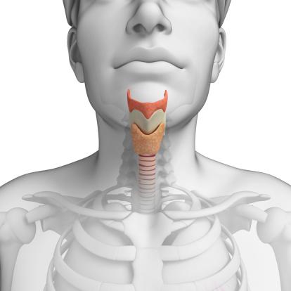 throat gay Vascular