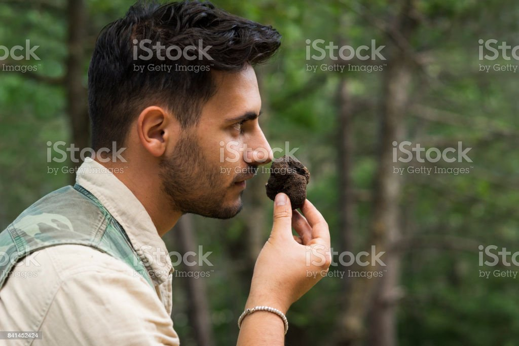 Male truffle hunter in 20's smells a newly collected truffle in the woods that his dogs dug up on a summer day, Abruzzo, Italy, Europe stock photo
